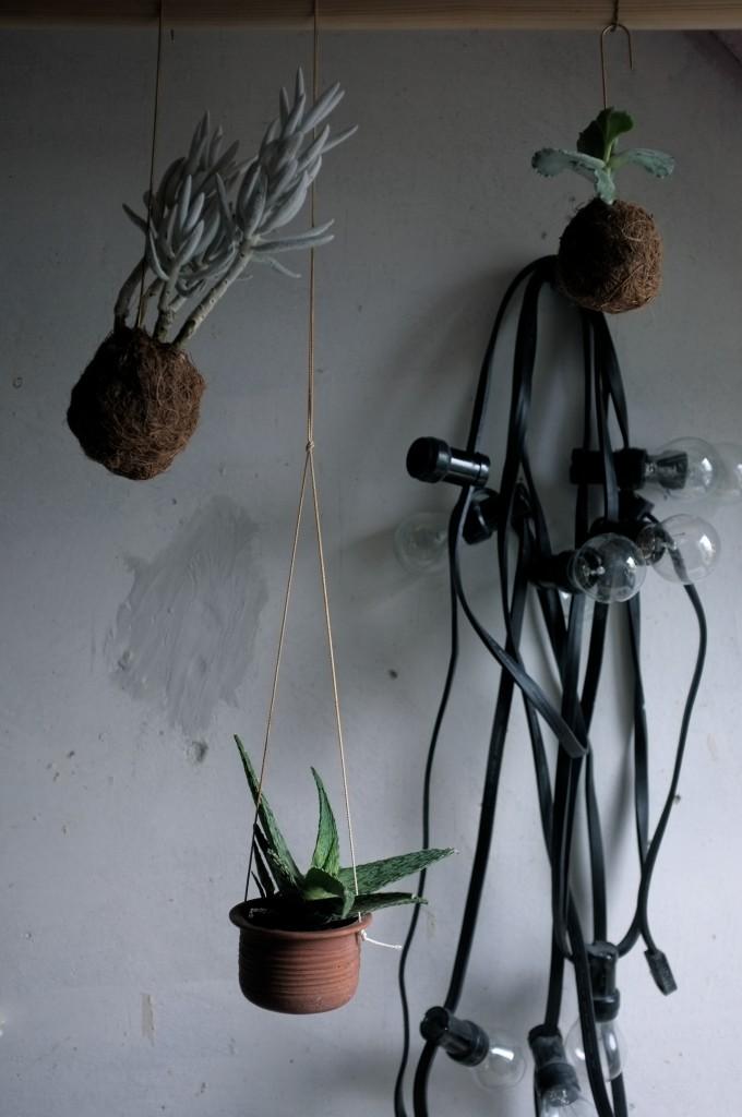 Planteplaneter